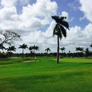 viajes_punta_cana_golf