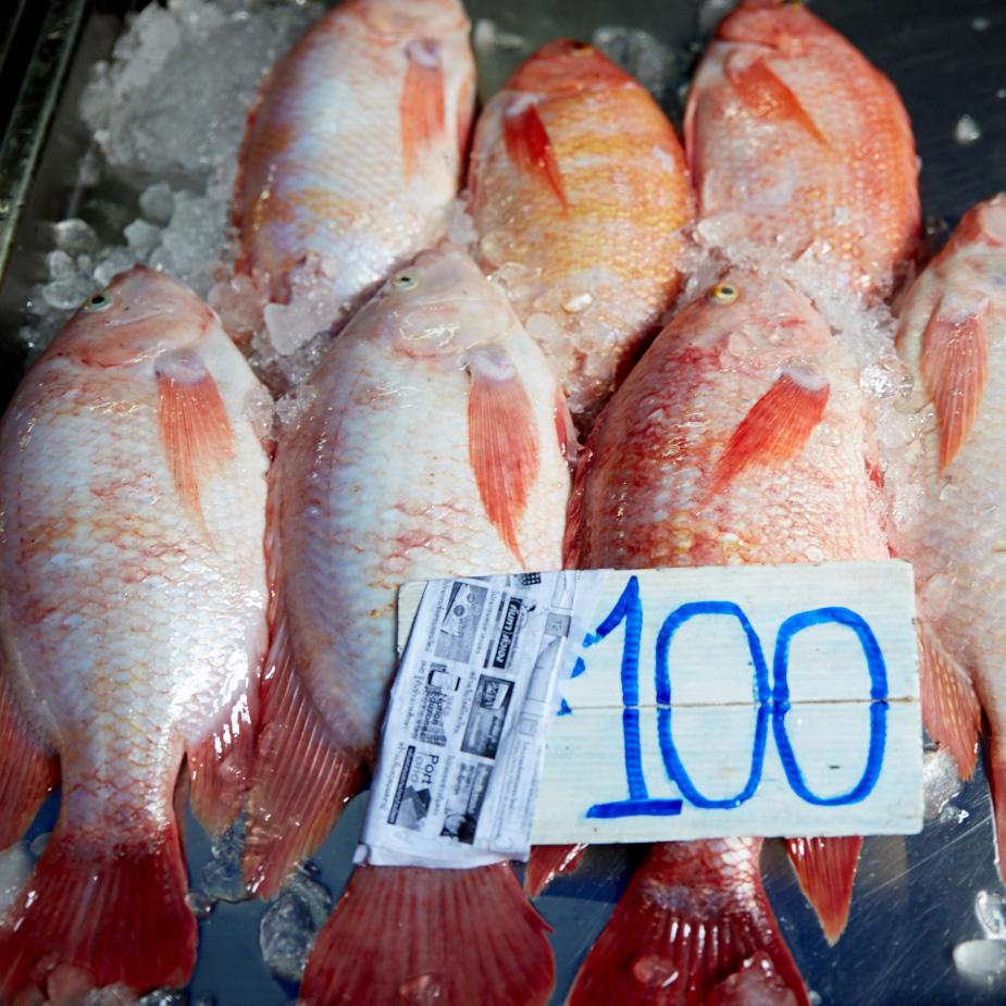 pescado_mercados_tailandia