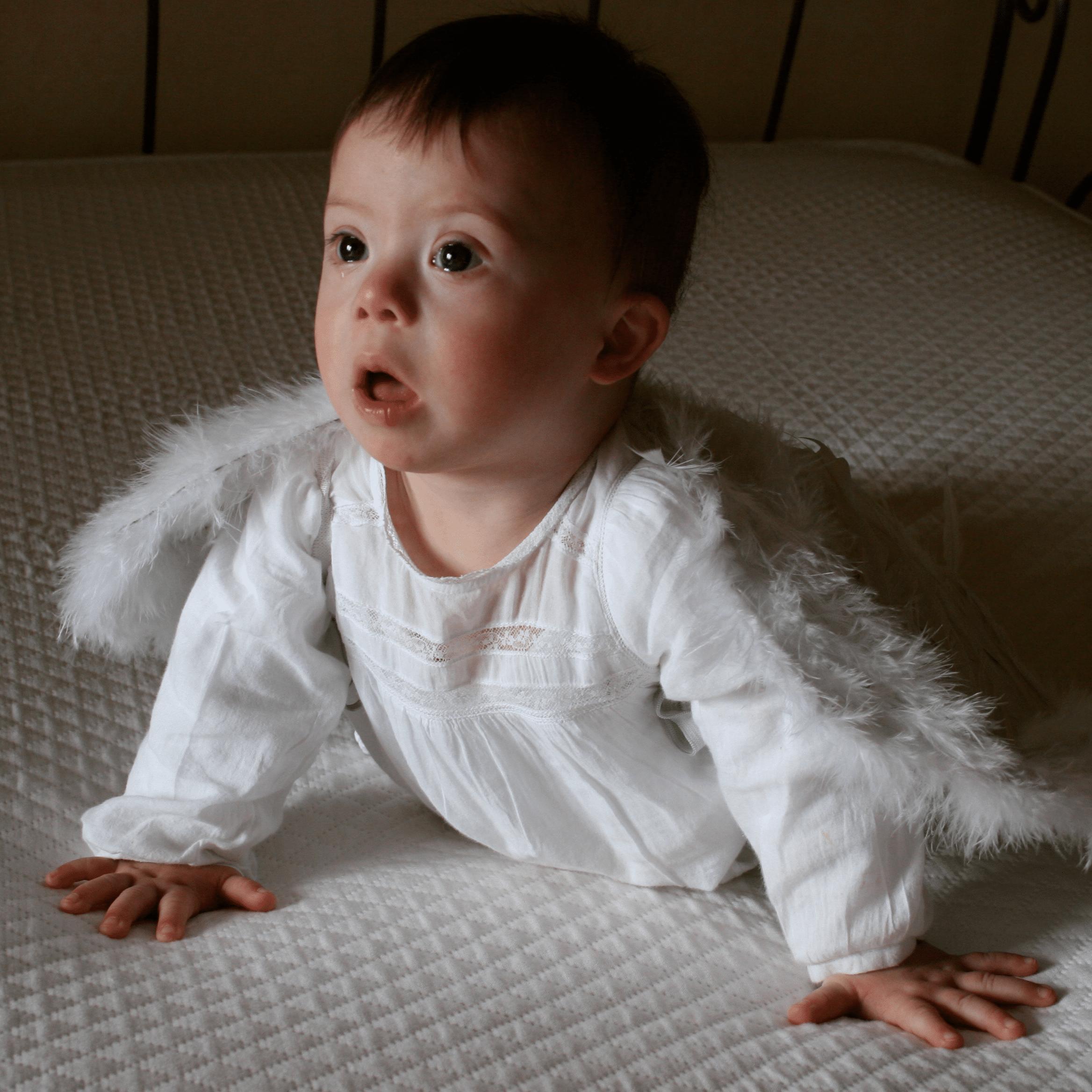 roscon_disfrazado_angel