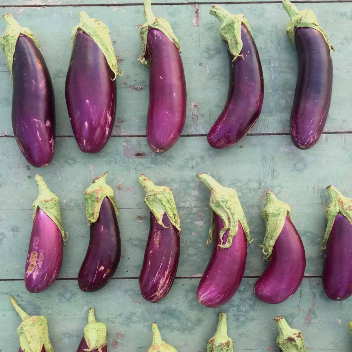 productos_menorca_verdura