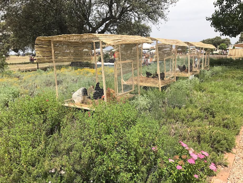 Jardines de campo samantha vallejo n gera samantha for Jardines de campo